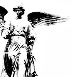 Cp_angel